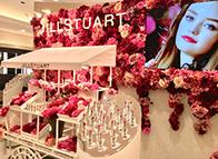 JILLSTUART Lip Blossom Promotion